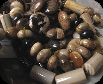 atelier-bois-petrifie-fossile-0005-blog-rond
